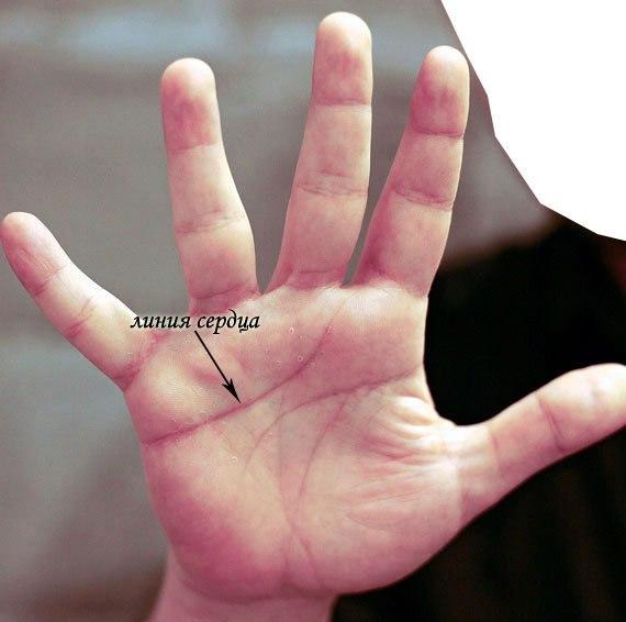 линия сердца на руке значение с картинками